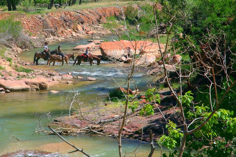 IMG_6014 Horseback Ride