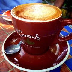 atole(0.0), food(0.0), turkish coffee(0.0), espresso(1.0), cappuccino(1.0), flat white(1.0), cup(1.0), coffee milk(1.0), caf㩠au lait(1.0), coffee(1.0), coffee cup(1.0), caff㨠macchiato(1.0), caff㨠americano(1.0), drink(1.0), latte(1.0), caffeine(1.0),