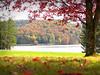 A tilt-shift autumn