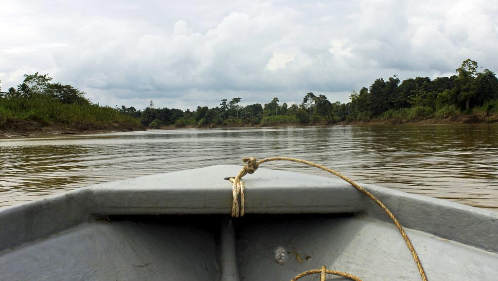 flodsafari på Borneo