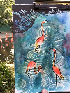 Flamingos at Kadoorie Farm and Botanic Garden