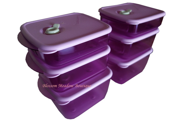 Tupperware vent and serve 6 piece set vent n serve six for Decor 6 piece lunchbox