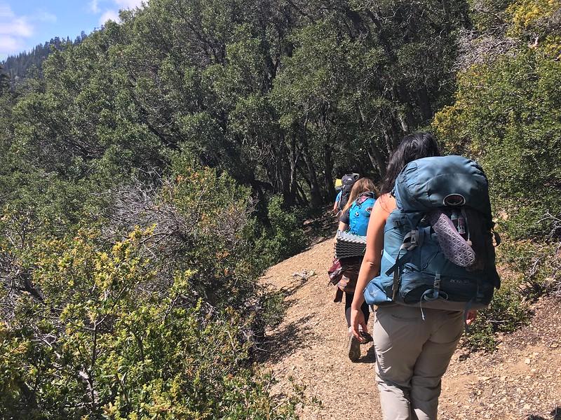Backpackers beginning their adventure