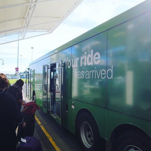 インターナショナルからドメスティックに移動したのに、空港の周りをぐるっと探検してたらもといたとこに戻ってしまったので、今度はバスに乗ってみる。 #オークランド空港