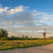 Summer evening in Kinderdijk by wimzilver