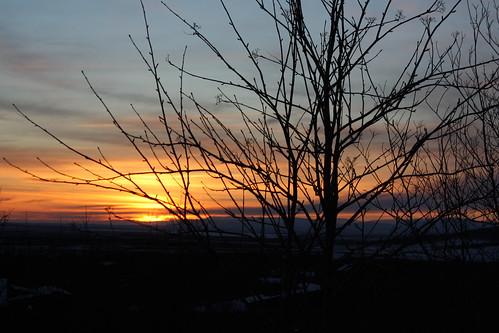 sunset brekkuskógur