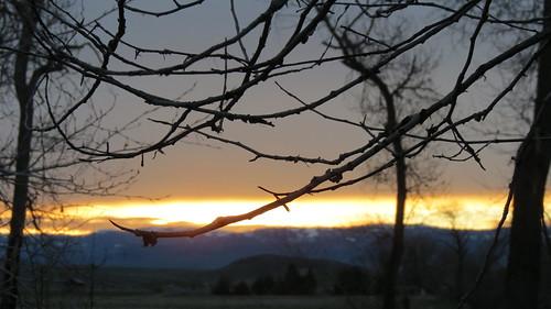 CC Sunrise