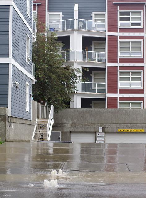 Calgary Flood 2013 - Day 1: 16
