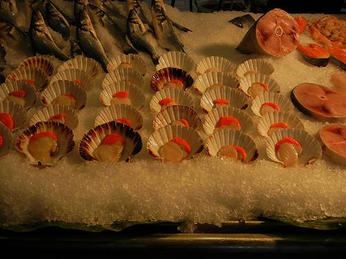 DSCN3121 _ Pescheria, Fish Market, Rialto Mercato, Venezia