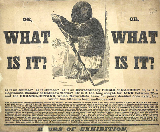 re examining the elephant man the public review an act shown at the royal surrey zoological gardens c 1846 source nb from the british library not openly licensed