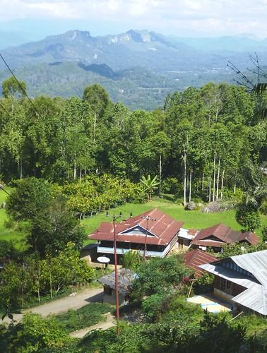 Sulawesi13-Lo'ko Mata-Tikala (39)