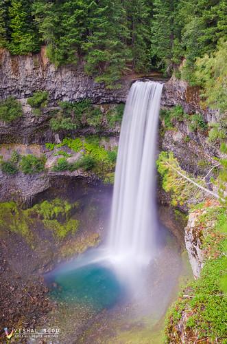 trees canada fall vancouver whistler nikon bc falls trail garibaldi provincialpark seatosky brandywine d7000