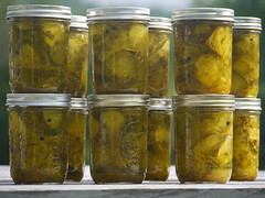 achaar, yellow, pickling, food preservation, food, canning,