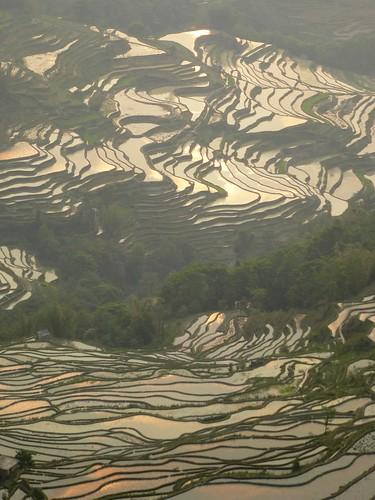 Yunnan13-Yuanyang 24-Bada (33)