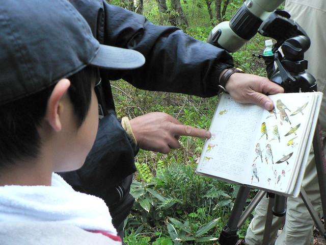 冬鳥であるマヒワの生息地域を確認.越冬地域,繁殖地域がちがう.