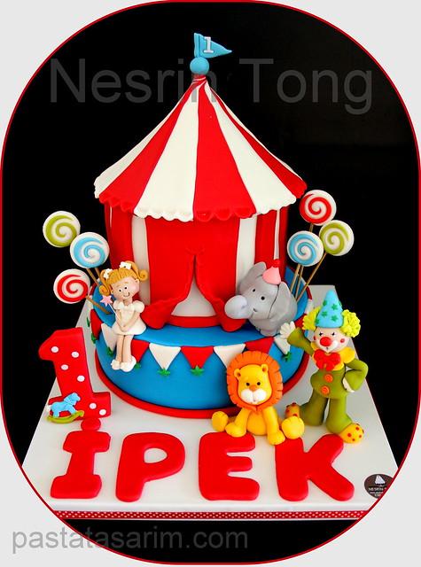circus cake - ipek