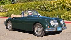 Jaguar '286 WIR' 1