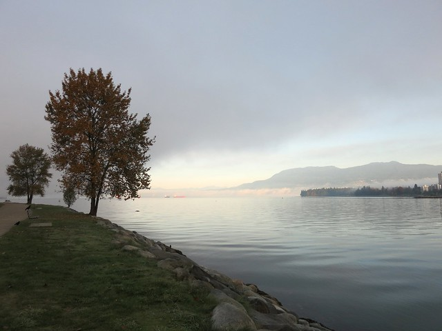 Foggy morning, Vanier Park