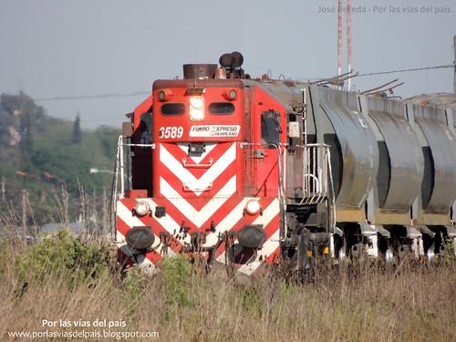 GM GR12 6589.