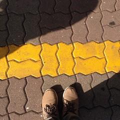 Behind the yellow photo line... #misadventures #troublemaker #photoline #doraobservation