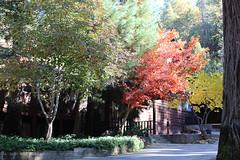 Quilt Retreat Fall 2013-188