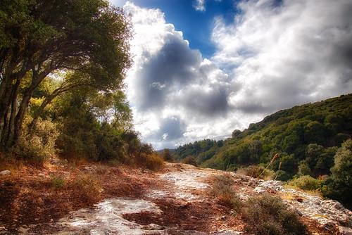 trees sky mountain nature clouds path crete rethymno κρήτη δέντρα φύση σύννεφα βουνό μονοπάτι ρέθυμνο ουρανόσ