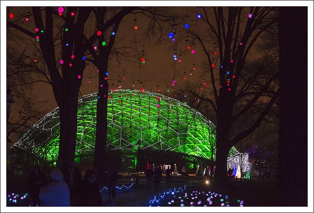 St Louis Daily Photo Garden Glow
