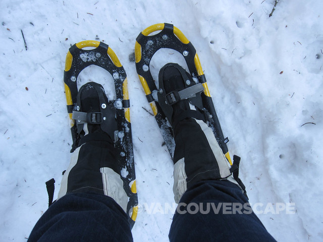 Snowshoe tour-1