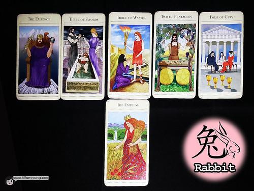 rabbit zodiac 2014 tarot reading