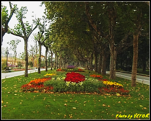 杭州 西湖 (其他景點) - 084 (湖濱路的湖畔花園)