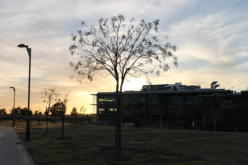 2014.02.02.088 - SEVILLA - Campus Palmas Altas