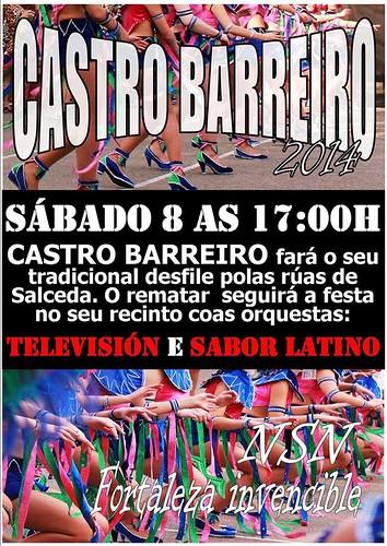 Salceda de Caselas 2014 - Entroido pequeno en Castro Barreiro - cartel