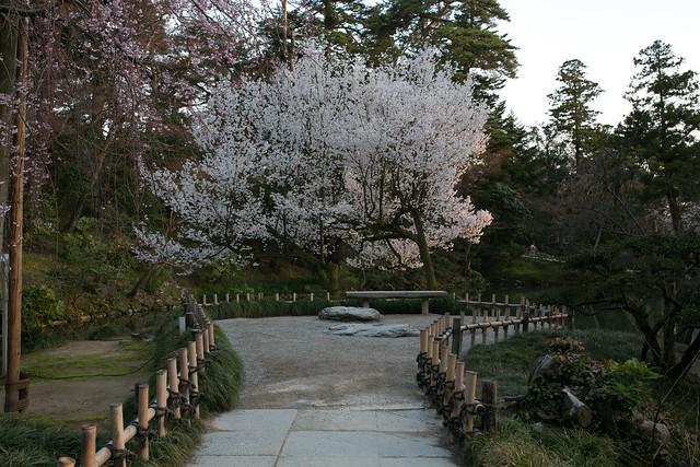 春の兼六園とその周辺