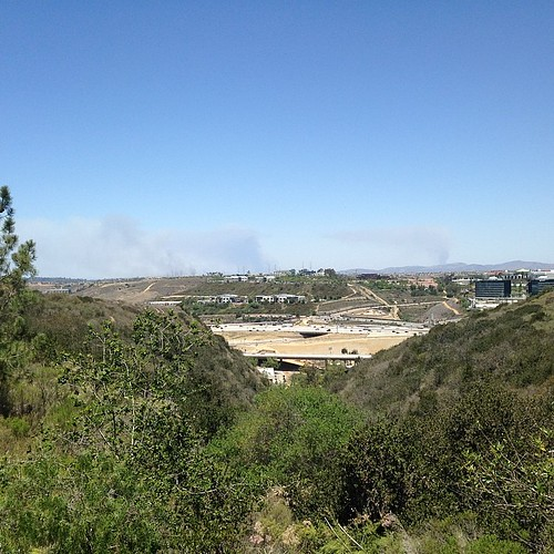 Plumes indicate the wind is calmer, but now three or more fires?? View from work.