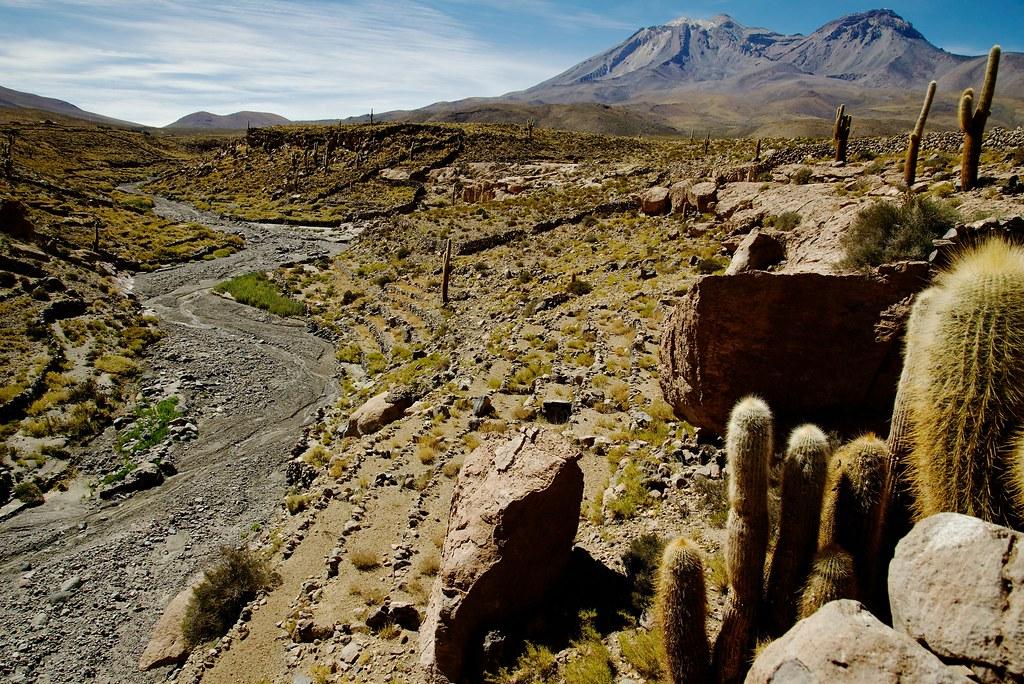 Terrazas De Cultivo Cupo Calama Chile Lucas Pedro