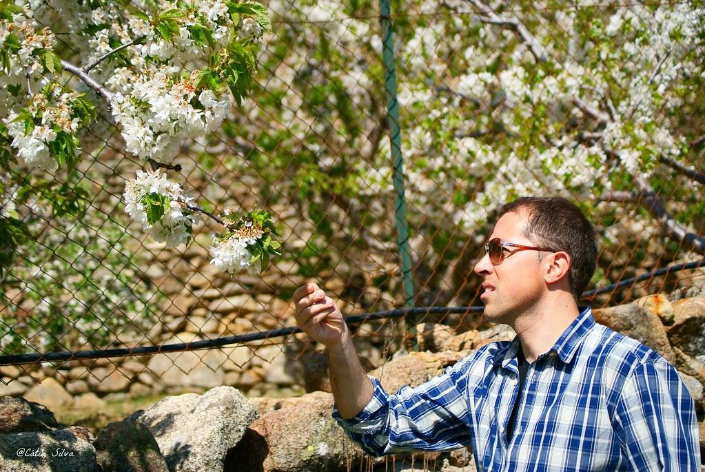 Extremadura-Valle del Jerte-Cerezo en Flor (9)