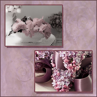 Begonias And Lilacs Photo Picture Collage