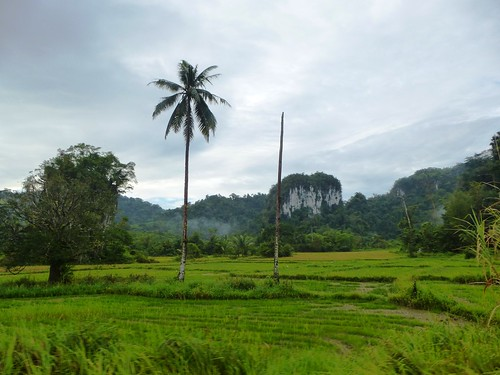 Pal-Sabang-Salvation-route  (9)