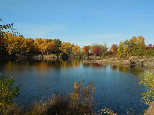 early fall shades