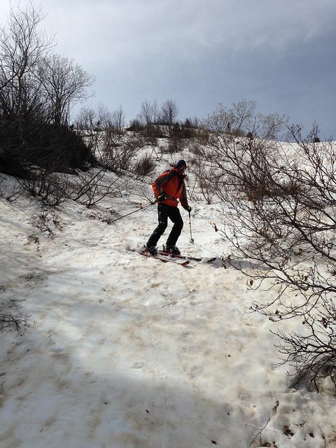 Ski entre les arbustes
