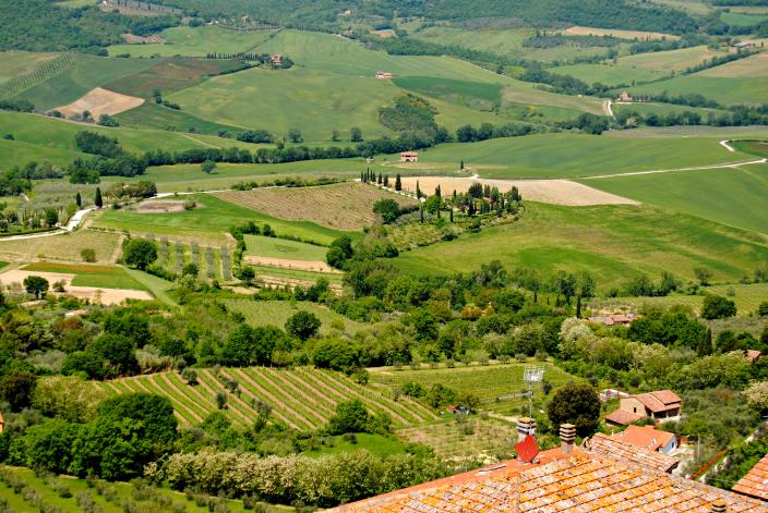 Go Treavel_Montepulciano, Toscana (12)