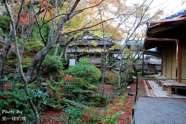 嵐山旅遊景點-常寂光寺31