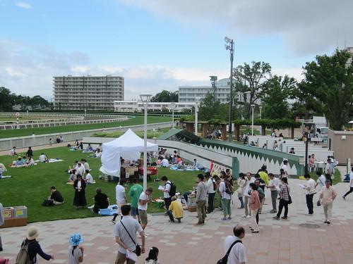 函館競馬場の内馬場公園への通路