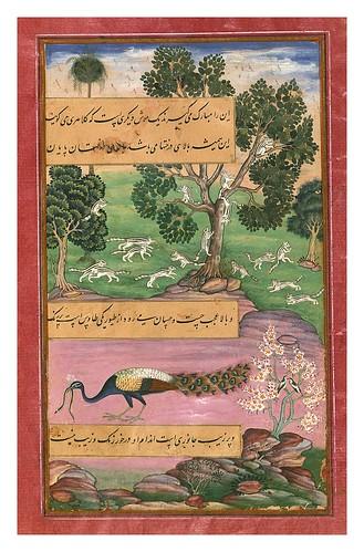 013-Memorias de Babur-1500-1600-Biblioteca Digital Mundial