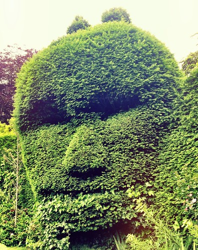 The face in green