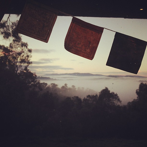 Early morning through dirty kitchen window.