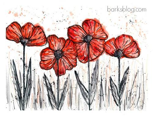 poppies-1W