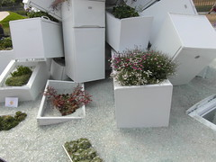 the fridge garden