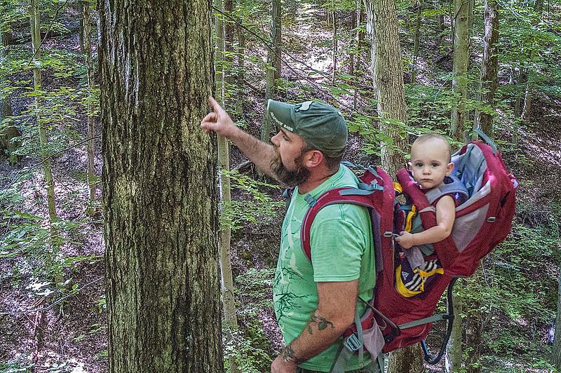 Hoosier National Forest - Story - Nebo Ridge - August 24, 2013
