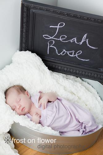090613-NewbornLeahLR-168